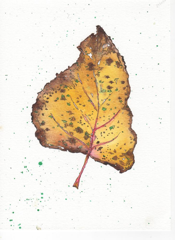 Leaf19
